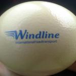 Ettevõtte logoga jaanalinnu muna.